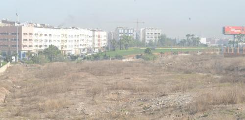 Marche de proximite Dakhla